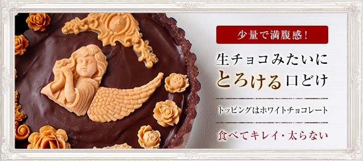 濃厚クラシックチョコレートケーキ(天使の微笑み)